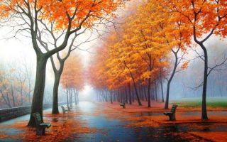 Советы о том, как нарисовать осень