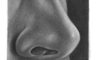 Советы о том, как нарисовать лицо в профиль