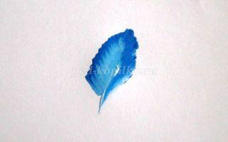 Как научиться рисованию акрилом?