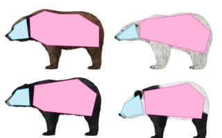 Пошаговый урок о том, как нарисовать животных