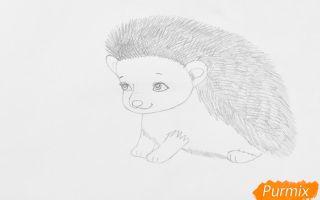 Методы того, как нарисовать ежика