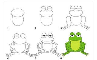 Уроки о том, как нарисовать лягушку