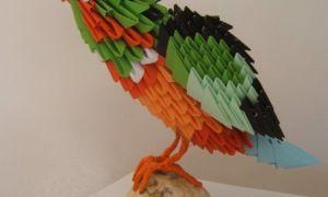Мастер-класс о том, как нарисовать птиц