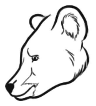 Как рисовать медведя: медведицу медвежонка