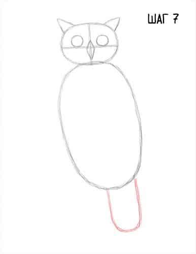 Как нарисовать сову: птицу карандашом поэтапно