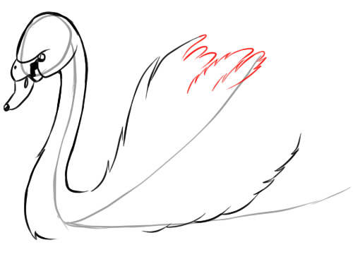 Как нарисовать лебедя: карандашом поэтапно видео