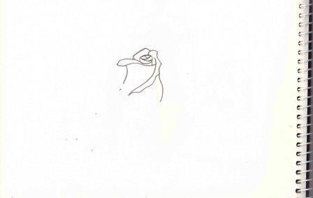 Как нарисовать розу поэтапно карандашом для начинающих