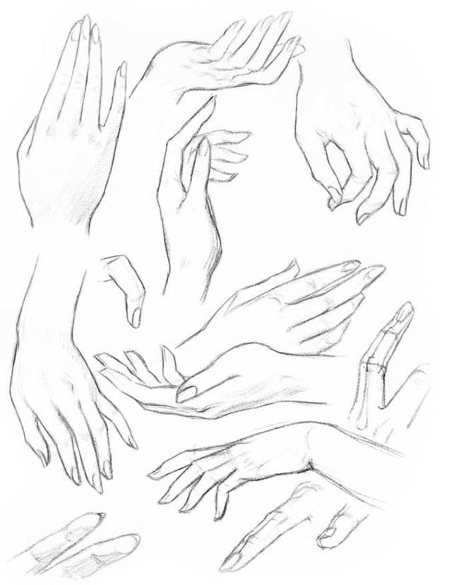 Как рисовать руки руку человека: кисть пальцы кулак