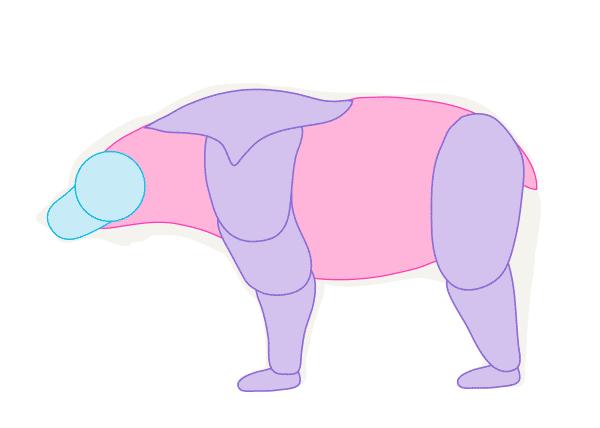 Как рисовать животных: кошку собаку медведя слона