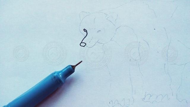 Как нарисовать медведя: карандашом, фломастером или красками, поэтапная инструкция для начинающих
