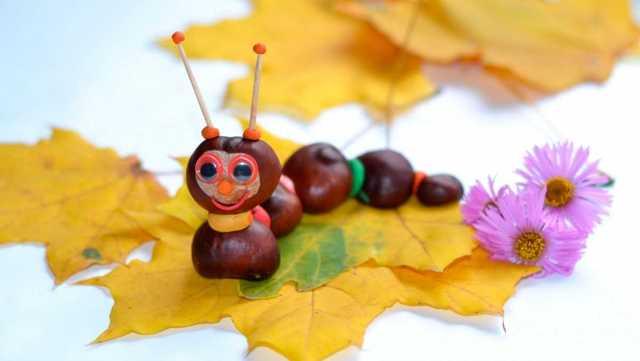 Осенние поделки: идеи изделий из осеннего материала