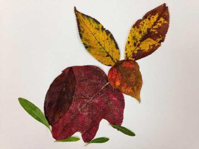 Аппликация из осенних листьев: идеи аппликаций из осеннего материала